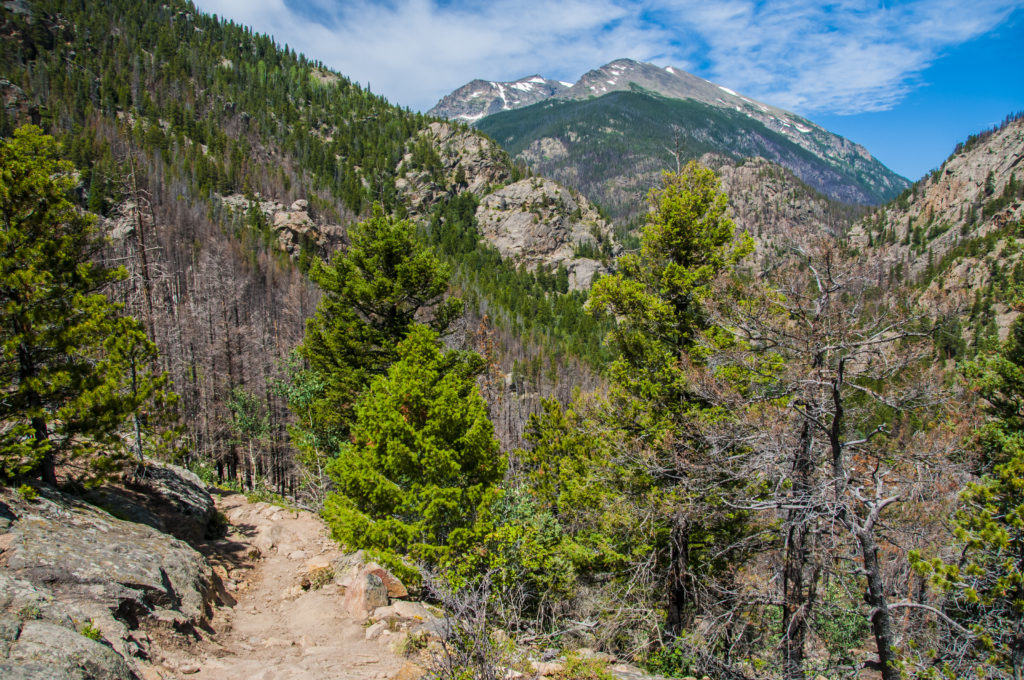 Fern Lake Trail with a view of the Stones Peak Mountain Colorado