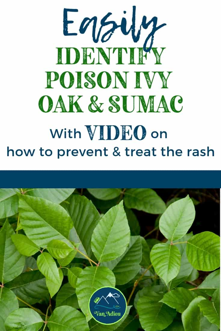Prevent or Treat any Poison Ivy, Poison Oak and Sumac Rash!