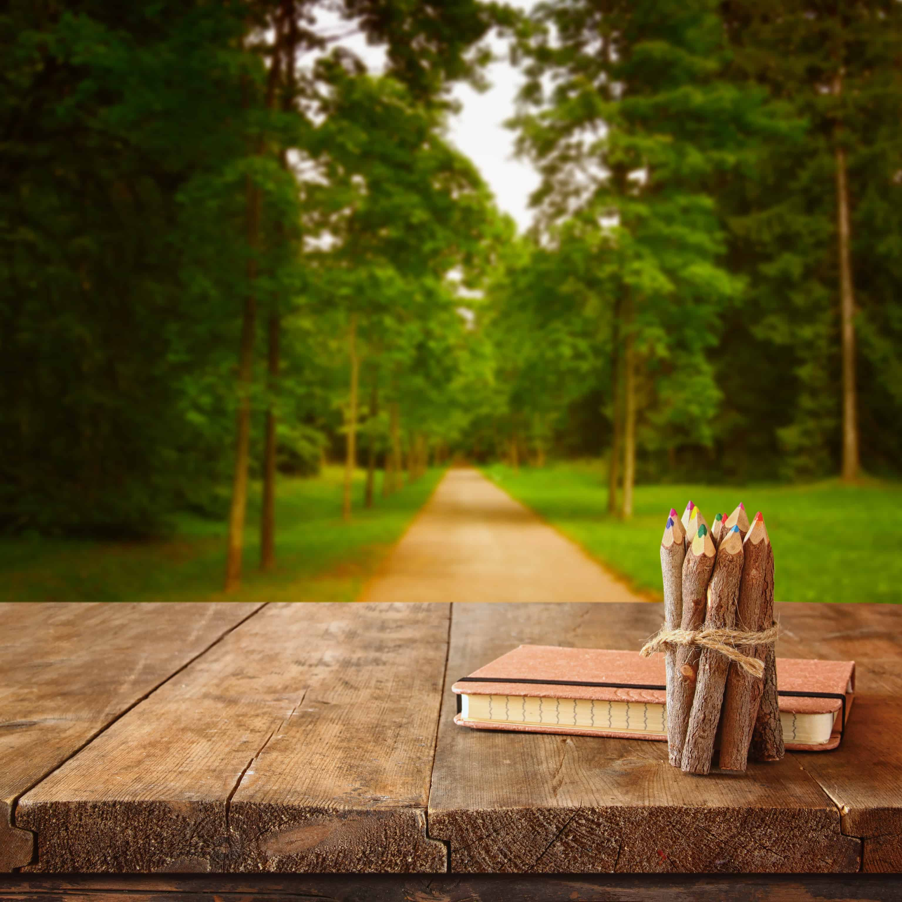 pencils and journal on wooded desk in forest